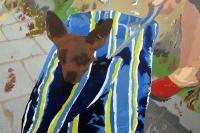 Picture n°5 (David & Florian), 2008 - acrylique sur toile, 80 x 120 cm