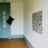 Surdépopulation-Palais de l'Athénée - @salle Crosnier, Genève, 2005