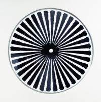 Densité, sérigraphie sur aluminium - ø 84 cm, 2013