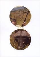 puissance heureuse, 2012 - collage sur papier, 20 x 14,5 cm