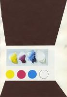 Exemple de connaissance produite - 2014, acryl sur papier, 26 x 17,5cm