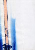 Morphose complexe, 2006 - encre sur pastique, 29,7 x 21 cm