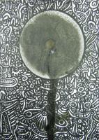 Rêve d'Océanie, 2003 -  Appareil édition